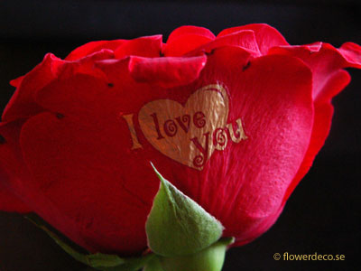 I-love-you-guld